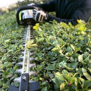 EGO Hedge Trimmers